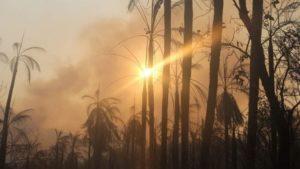 Importante área de preservação da biodiversidade no Pantanal, Serra do Amolar sofreu com queimadas — Foto: Sílvio de Andrade/Governo de MS