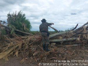 Desmatamento em Porto Murtinho