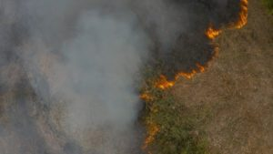 incêndio Pantanal
