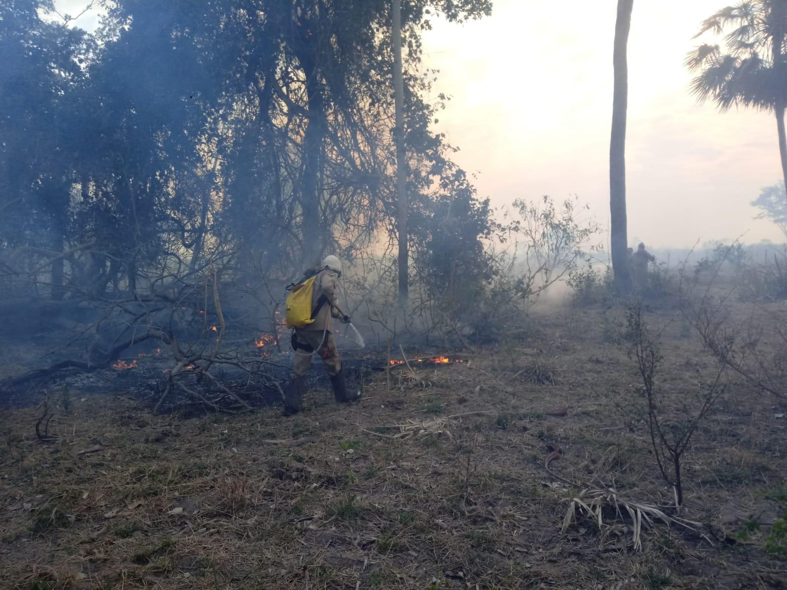 incêndio em Bodoquena